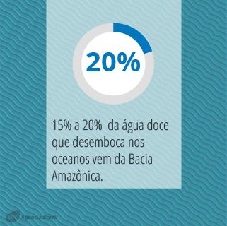 desmatamento_1.2.png
