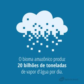 desmatamento_1.6.png