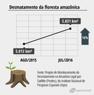 desmatamento_2.4.png
