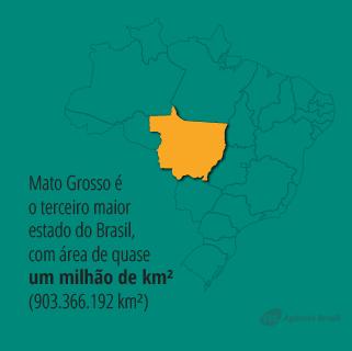 desmatamento_4.1.png