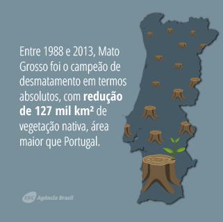 desmatamento_4.7.png