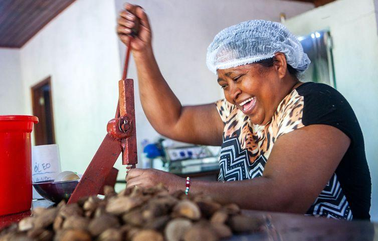 Quem são os fundadores da miniusina de castanhas na Bacia do Rio Xingu